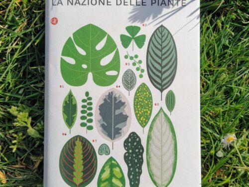 Organizzazione delle piante