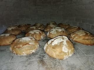 Il pane filosofale della comunità